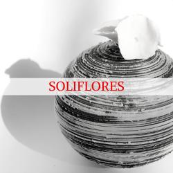 Consultez les Soliflores de Sylvie Souton Chany