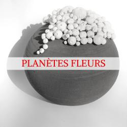 Découvrez les Planètes Fleurs, créations originales de l'Atelier de la Terre Ronde